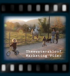 Theewaterskloof Marketing Video